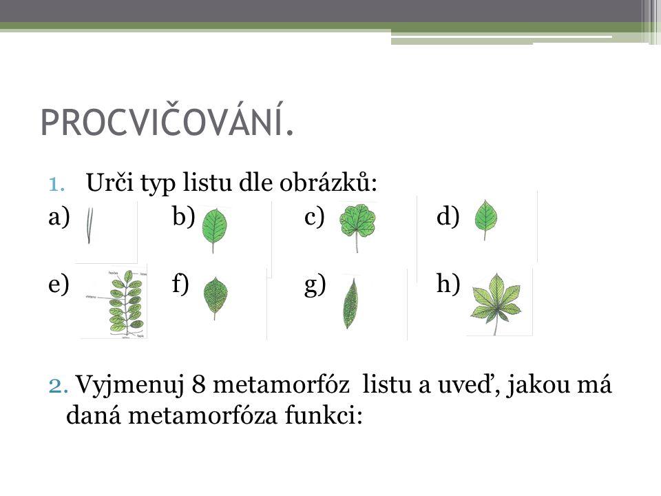 PROCVIČOVÁNÍ. 1.Urči typ listu dle obrázků: a)b)c)d) e)f)g)h) 2. Vyjmenuj 8 metamorfóz listu a uveď, jakou má daná metamorfóza funkci: