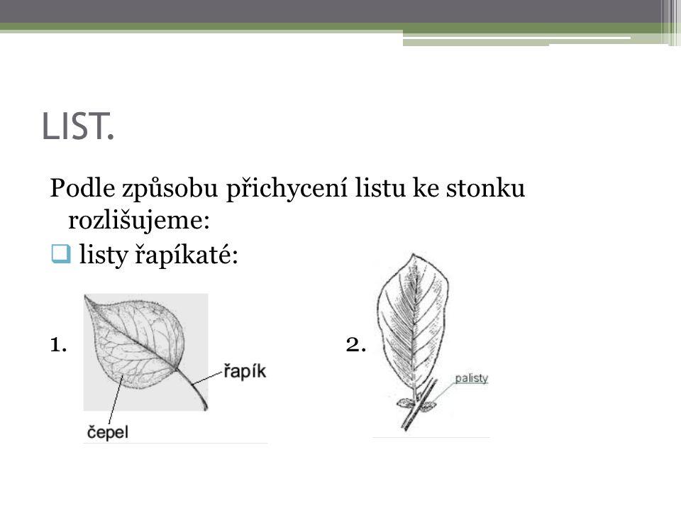 LIST. Podle způsobu přichycení listu ke stonku rozlišujeme:  listy řapíkaté:  1. 2.