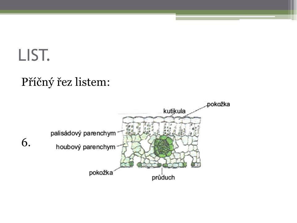 Použitá literatura a zdroje.1. [online]. [cit. 2012-09-12].