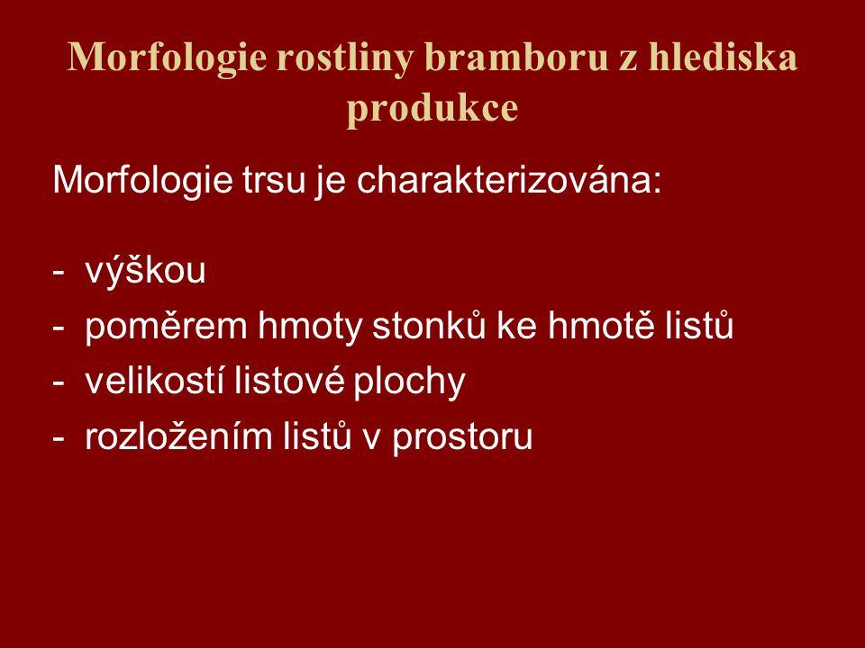 Morfologie rostliny bramboru z hlediska produkce Morfologie trsu je charakterizována: -výškou -poměrem hmoty stonků ke hmotě listů -velikostí listové plochy -rozložením listů v prostoru
