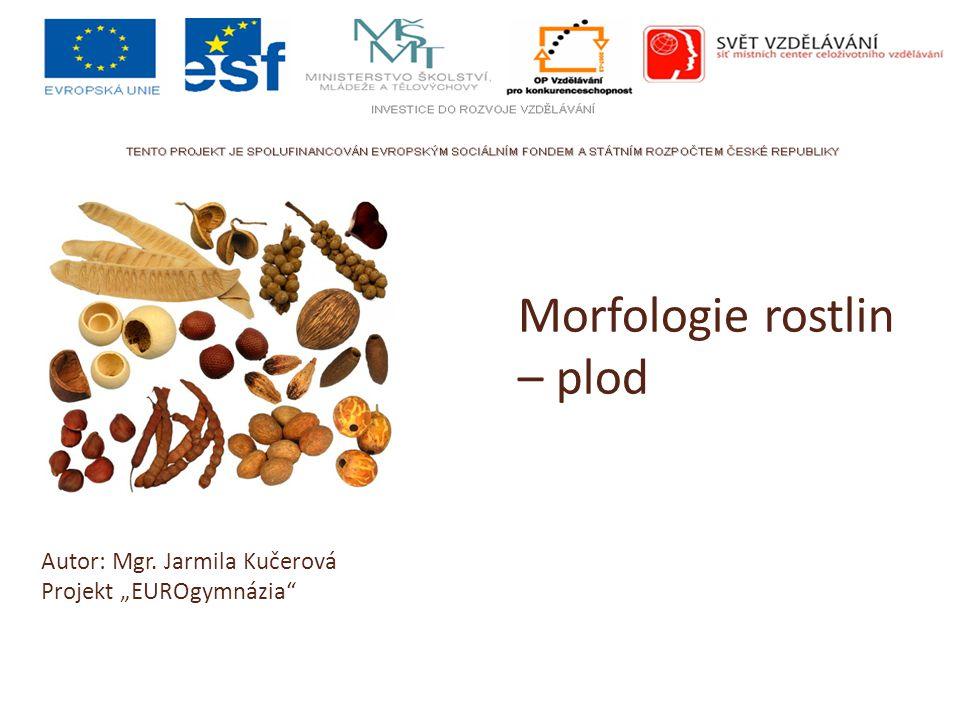 """Morfologie rostlin – plod Autor: Mgr. Jarmila Kučerová Projekt """"EUROgymnázia"""""""