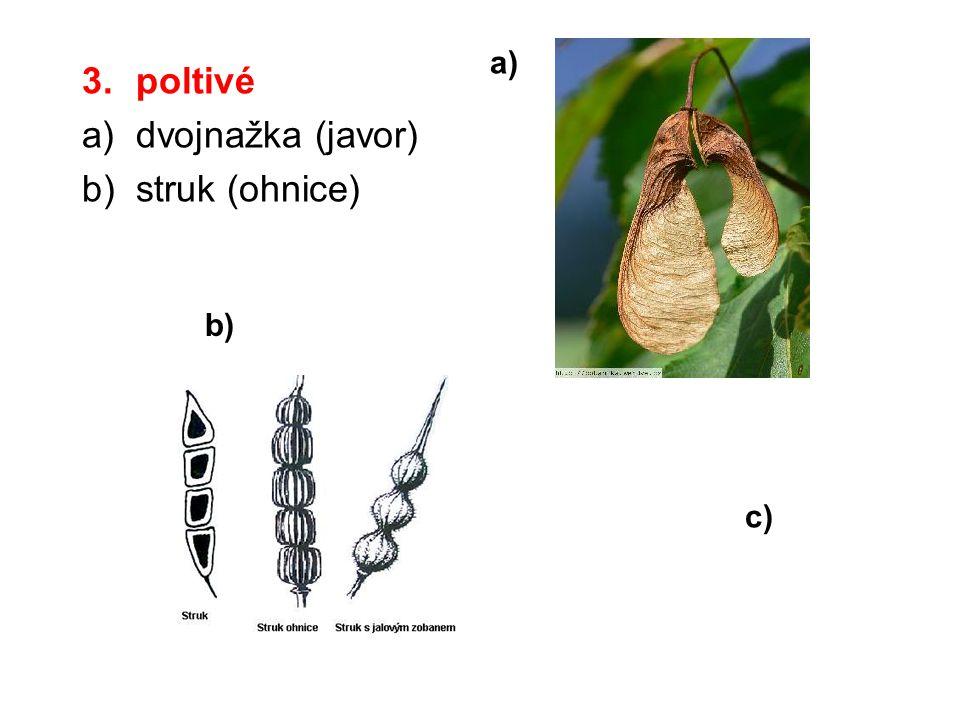 3.poltivé a)dvojnažka (javor) b)struk (ohnice) a) b) c)