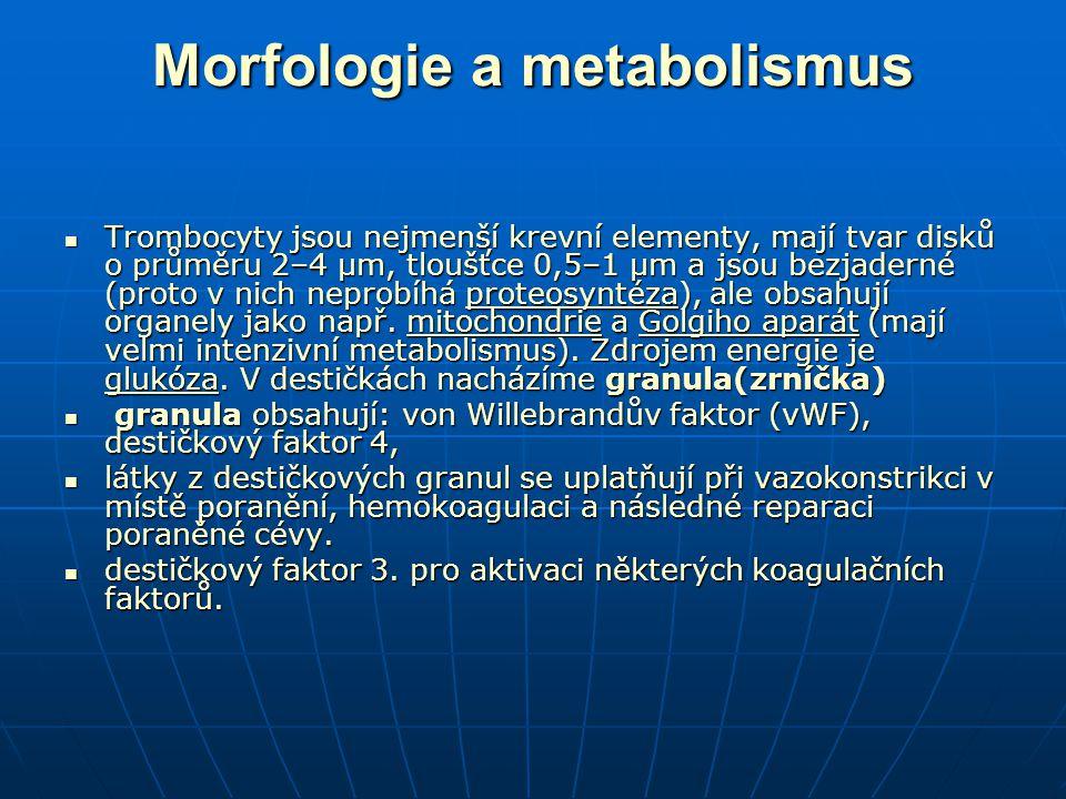Morfologie a metabolismus Trombocyty jsou nejmenší krevní elementy, mají tvar disků o průměru 2–4 μm, tloušťce 0,5–1 μm a jsou bezjaderné (proto v nich neprobíhá proteosyntéza), ale obsahují organely jako např.