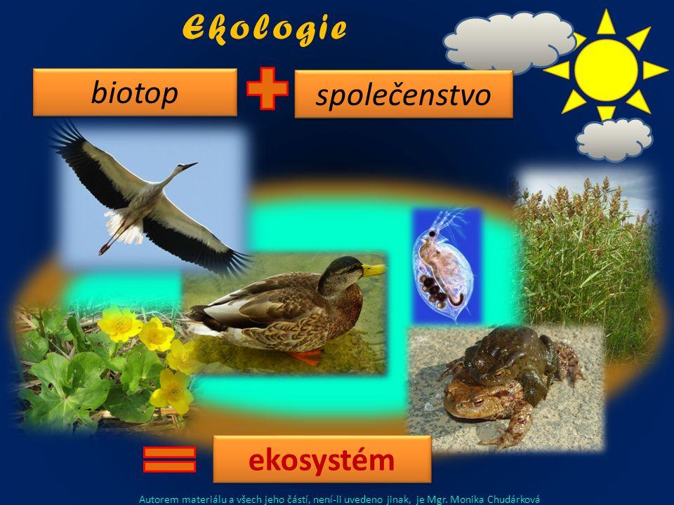 společenstvo biotop ekosystém Ekologie Autorem materiálu a všech jeho částí, není-li uvedeno jinak, je Mgr.