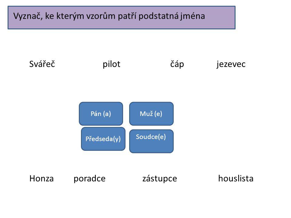 Vyznač, ke kterým vzorům patří podstatná jména Soudce(e) Pán (a)Muž (e) Předseda(y) Svářeč pilot čáp jezevec Honza poradce zástupce houslista