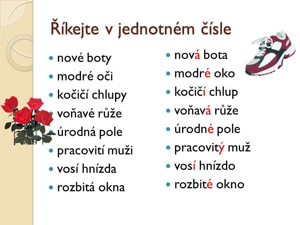 Říkejte v jednotném čísle nové boty modré oči kočičí chlupy voňavé růže úrodná pole pracovití muži vosí hnízda rozbitá okna nová bota modré oko kočičí chlup voňavá růže úrodné pole pracovitý muž vosí hnízdo rozbité okno