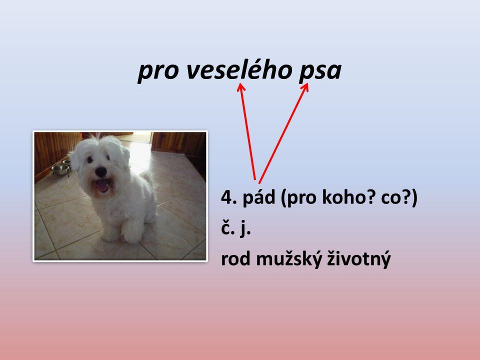 pro veselého psa 4. pád (pro koho? co?) č. j. rod mužský životný