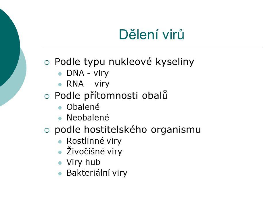 Dělení virů  Podle typu nukleové kyseliny DNA - viry RNA – viry  Podle přítomnosti obalů Obalené Neobalené  podle hostitelského organismu Rostlinné