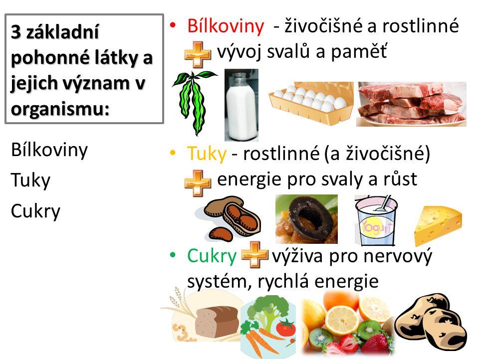 3 základní pohonné látky a jejich význam v organismu: Bílkoviny - živočišné a rostlinné vývoj svalů a paměť Tuky - rostlinné (a živočišné) energie pro svaly a růst Cukry - výživa pro nervový systém, rychlá energie Bílkoviny Tuky Cukry
