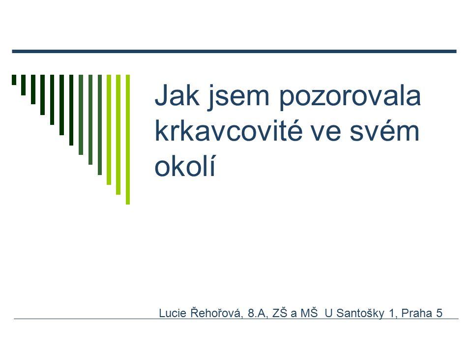 Jak jsem pozorovala krkavcovité ve svém okolí Lucie Řehořová, 8.A, ZŠ a MŠ U Santošky 1, Praha 5