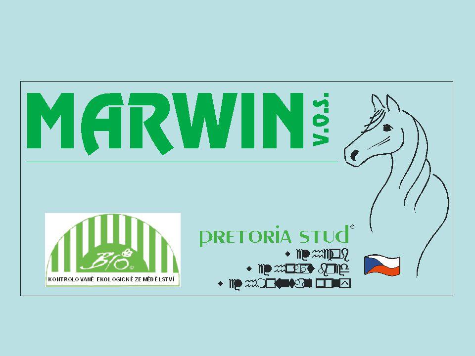 Historie společnosti Současnost Rostlinná výroba Živočišná výroba Chov skotu Chov ovcí Chov koní – Hřebčín Pretoria Služby