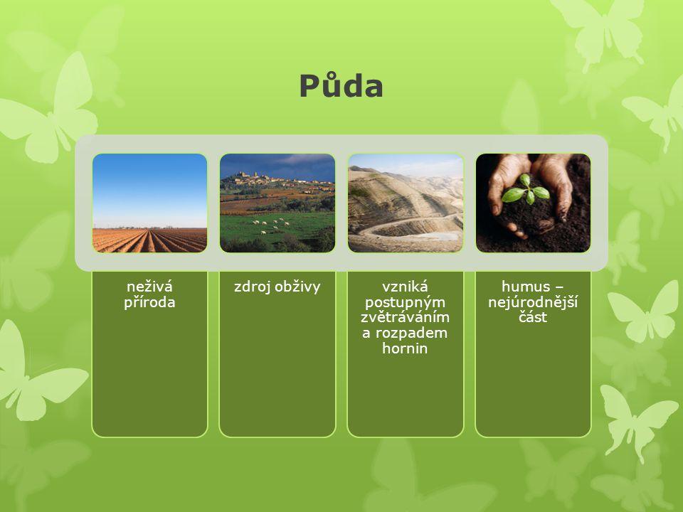 Půda neživá příroda zdroj obživyvzniká postupným zvětráváním a rozpadem hornin humus – nejúrodnější část