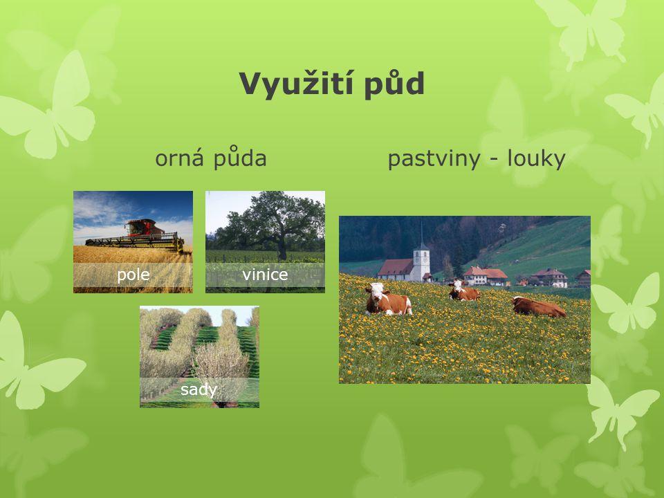 Využití půd orná půda polevinice sady pastviny - louky