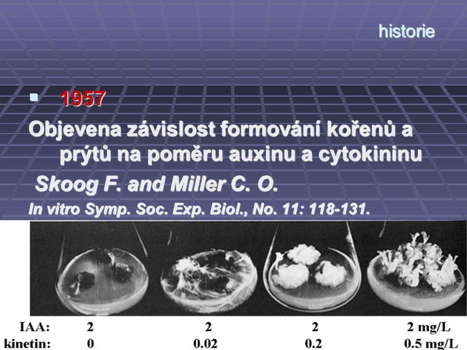 historie  1957 Objevena závislost formování kořenů a prýtů na poměru auxinu a cytokininu Skoog F. and Miller C. O. Skoog F. and Miller C. O. In vitro