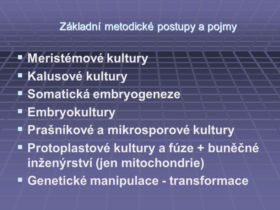   Meristémové kultury   Kalusové kultury   Somatická embryogeneze   Embryokultury   Prašníkové a mikrosporové kultury   Protoplastové kult