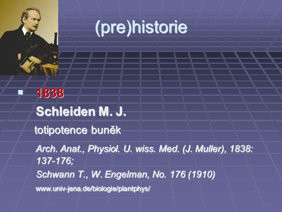 (pre)historie  1838 Schleiden M. J. totipotence buněk totipotence buněk Arch. Anat., Physiol. U. wiss. Med. (J. Muller), 1838: 137-176; Schwann T., W