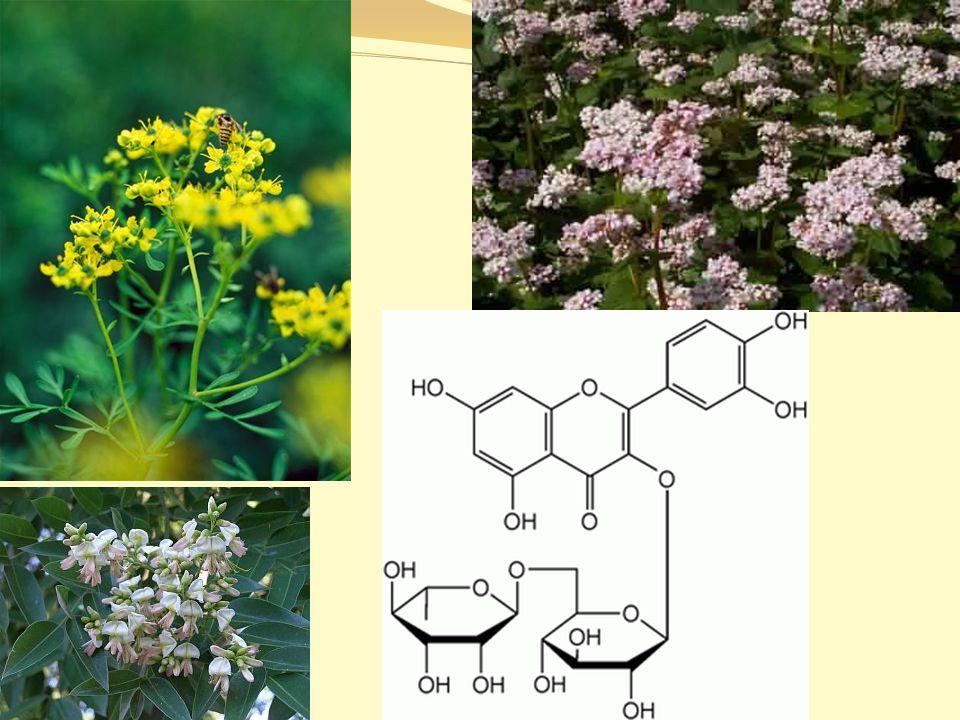 Hesperidin a Diosmin citrusové bioflavonoidy Hesperidin a Diosmin jsou aktivní látky, které se nachází ve slupkách citrusových plodů pro své působení na krevní cévy se tyto přírodní látky nejčastěji používají při hemoroidech