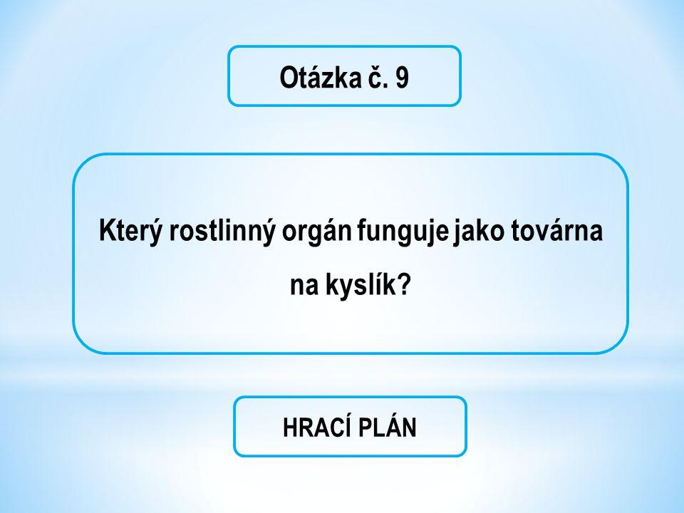 Otázka č. 9 Který rostlinný orgán funguje jako továrna na kyslík? HRACÍ PLÁN