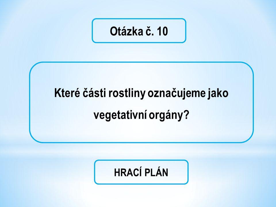 Otázka č. 10 Které části rostliny označujeme jako vegetativní orgány? HRACÍ PLÁN