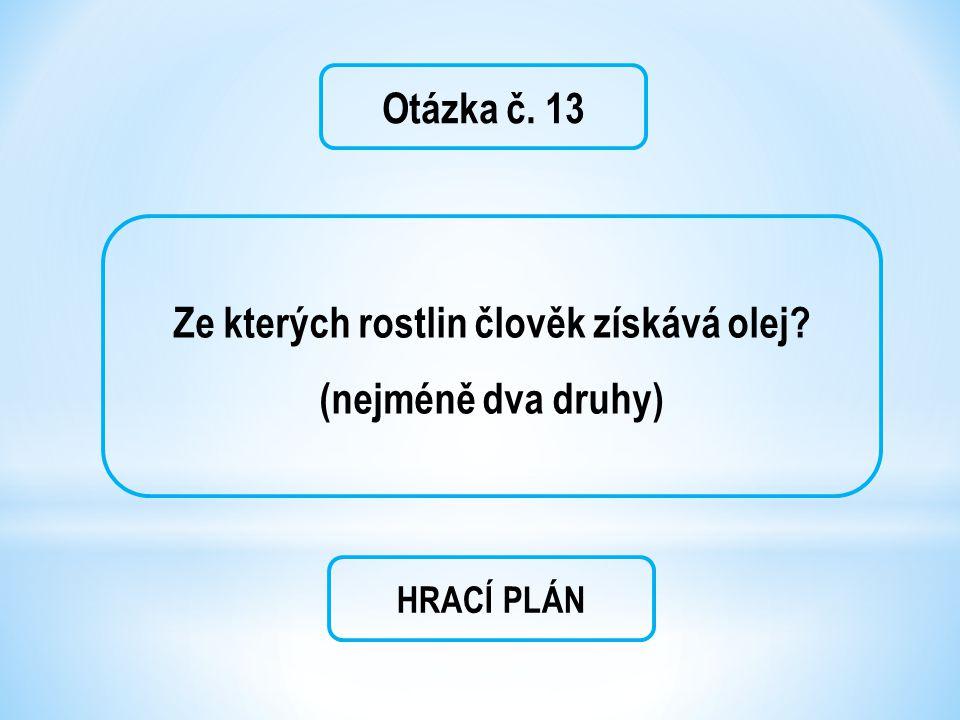 Otázka č. 13 Ze kterých rostlin člověk získává olej? (nejméně dva druhy) HRACÍ PLÁN