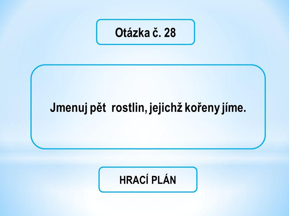 Otázka č. 28 Jmenuj pět rostlin, jejichž kořeny jíme. HRACÍ PLÁN