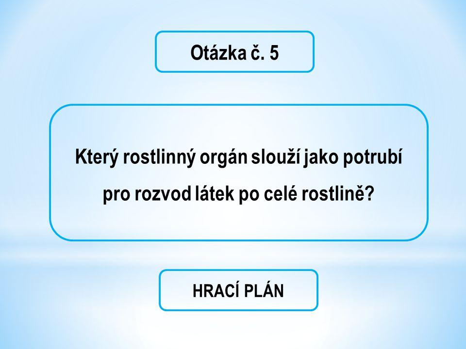 Otázka č. 5 Který rostlinný orgán slouží jako potrubí pro rozvod látek po celé rostlině? HRACÍ PLÁN