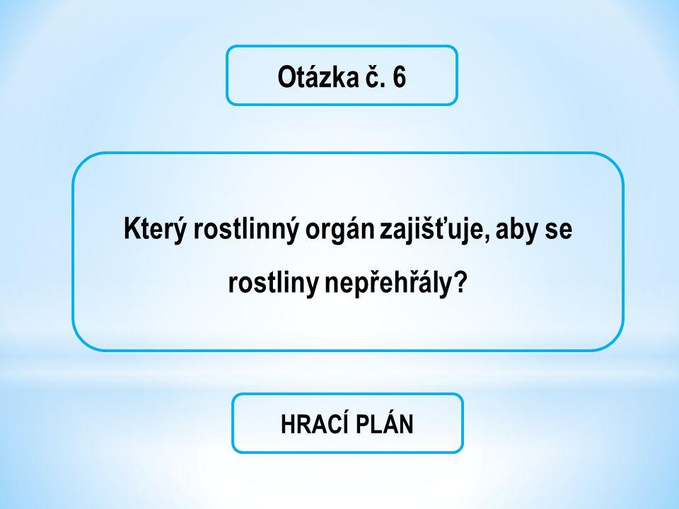 Otázka č. 6 Který rostlinný orgán zajišťuje, aby se rostliny nepřehřály? HRACÍ PLÁN