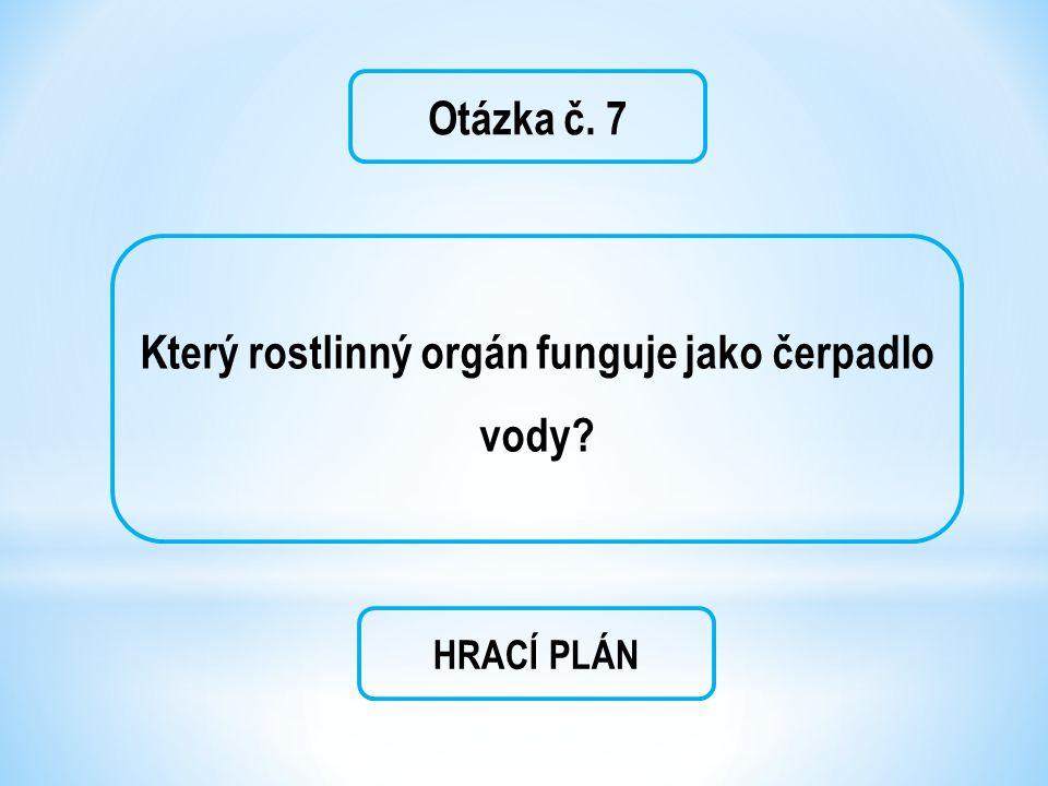Otázka č. 7 Který rostlinný orgán funguje jako čerpadlo vody? HRACÍ PLÁN