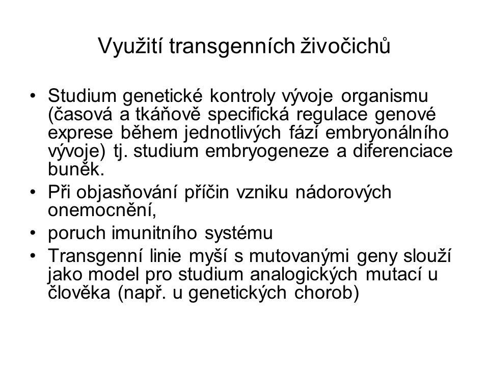 Využití transgenních živočichů Studium genetické kontroly vývoje organismu (časová a tkáňově specifická regulace genové exprese během jednotlivých fází embryonálního vývoje) tj.