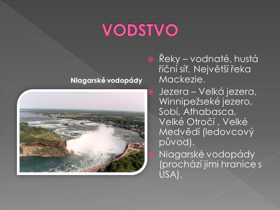  Řeky – vodnaté, hustá říční síť. Největší řeka Mackezie.  Jezera – Velká jezera, Winnipežseké jezero, Sobí, Athabasca, Velké Otročí, Velké Medvědí