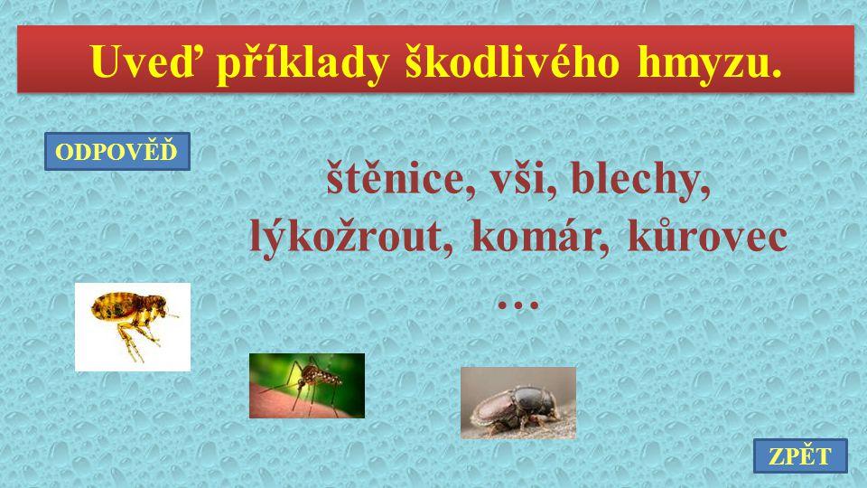 Uveď příklady škodlivého hmyzu. štěnice, vši, blechy, lýkožrout, komár, kůrovec … ZPĚT ODPOVĚĎ