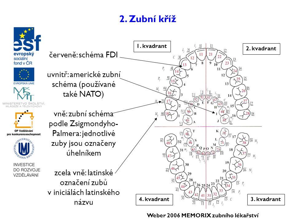 2. Zubní kříž 1. kvadrant 2. kvadrant 3. kvadrant4. kvadrant červeně: schéma FDI uvnitř: americké zubní schéma (používané také NATO) vně: zubní schéma