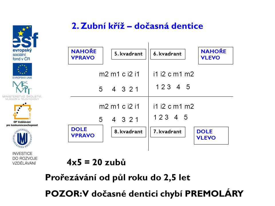 2. Zubní kříž – dočasná dentice m2 m1 c i2 i1i1 i2 c m1 m2 5. kvadrant6. kvadrant 7. kvadrant8. kvadrant NAHOŘE VPRAVO NAHOŘE VLEVO DOLE VPRAVO DOLE V
