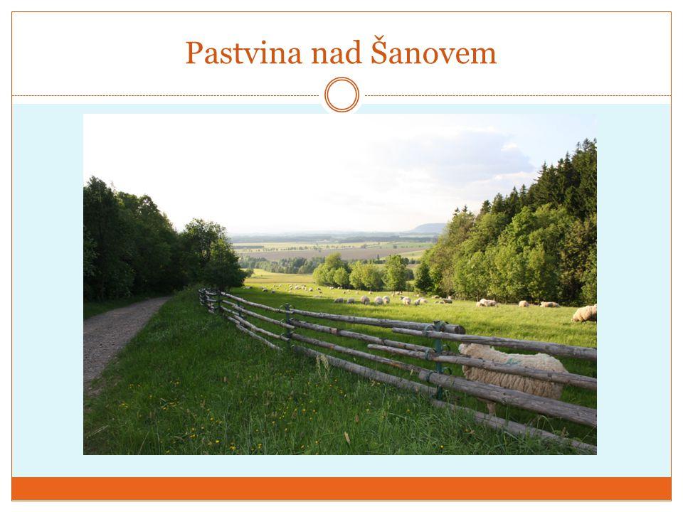 Pastvina nad Šanovem
