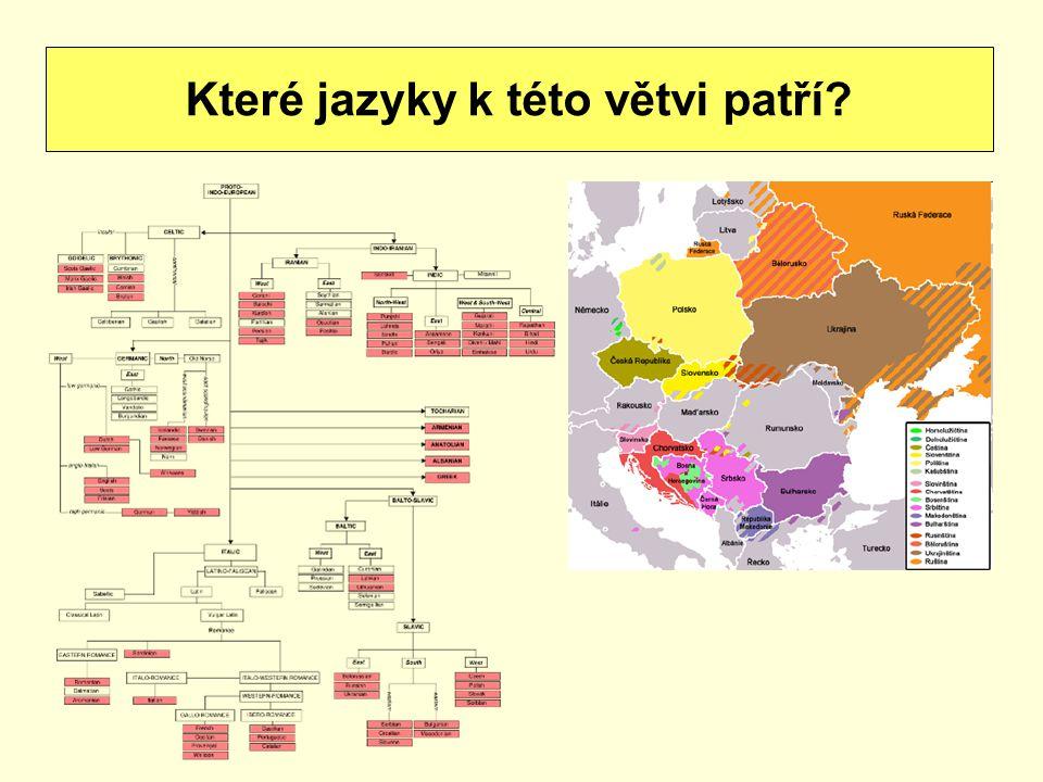 Které jazyky k této větvi patří?