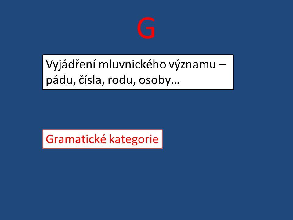G Vyjádření mluvnického významu – pádu, čísla, rodu, osoby… Gramatické kategorie
