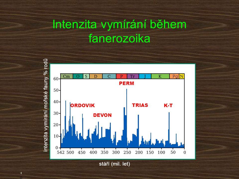 0 200400600 K-T TRIAS PERM DEVON ORDOVIK stáří (mil. let) intenzita vymírání mořské fauny % rodů Intenzita vymírání během fanerozoika