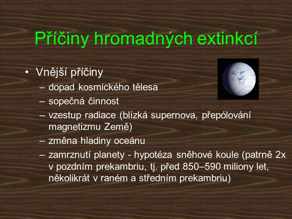 Příčiny hromadných extinkcí Vnější příčiny –dopad kosmického tělesa –sopečná činnost –vzestup radiace (blízká supernova, přepólování magnetizmu Země)