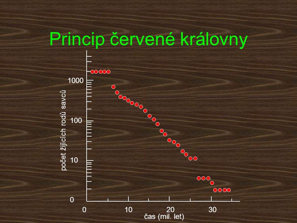 1020300 10 100 1000 0 čas (mil. let) počet žijících rodů savců Princip červené královny