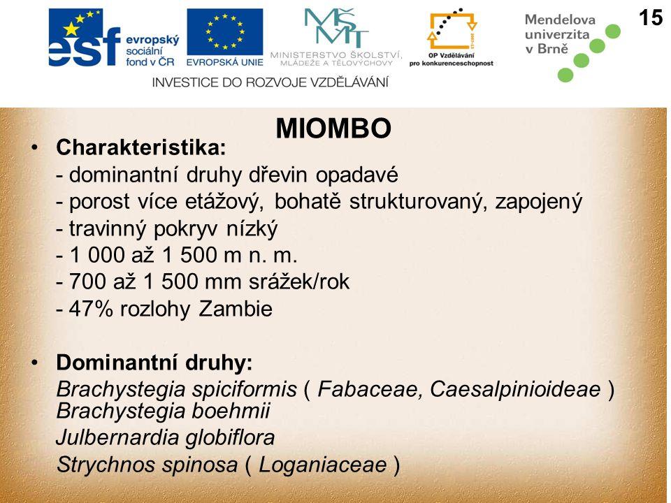 15 MIOMBO Charakteristika: - dominantní druhy dřevin opadavé - porost více etážový, bohatě strukturovaný, zapojený - travinný pokryv nízký - 1 000 až 1 500 m n.