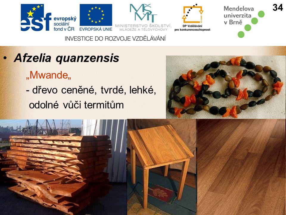 """Afzelia quanzensis 34 """"Mwande"""" - dřevo ceněné, tvrdé, lehké, odolné vůči termitům"""