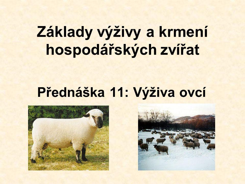 Základy výživy a krmení hospodářských zvířat Přednáška 11: Výživa ovcí