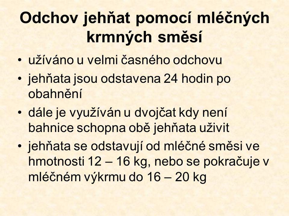 Odchov jehňat pomocí mléčných krmných směsí užíváno u velmi časného odchovu jehňata jsou odstavena 24 hodin po obahnění dále je využíván u dvojčat kdy není bahnice schopna obě jehňata uživit jehňata se odstavují od mléčné směsi ve hmotnosti 12 – 16 kg, nebo se pokračuje v mléčném výkrmu do 16 – 20 kg