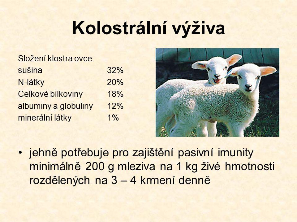Kolostrální výživa Složení klostra ovce: sušina32% N-látky20% Celkové bílkoviny18% albuminy a globuliny12% minerální látky1% jehně potřebuje pro zajištění pasivní imunity minimálně 200 g mleziva na 1 kg živé hmotnosti rozdělených na 3 – 4 krmení denně