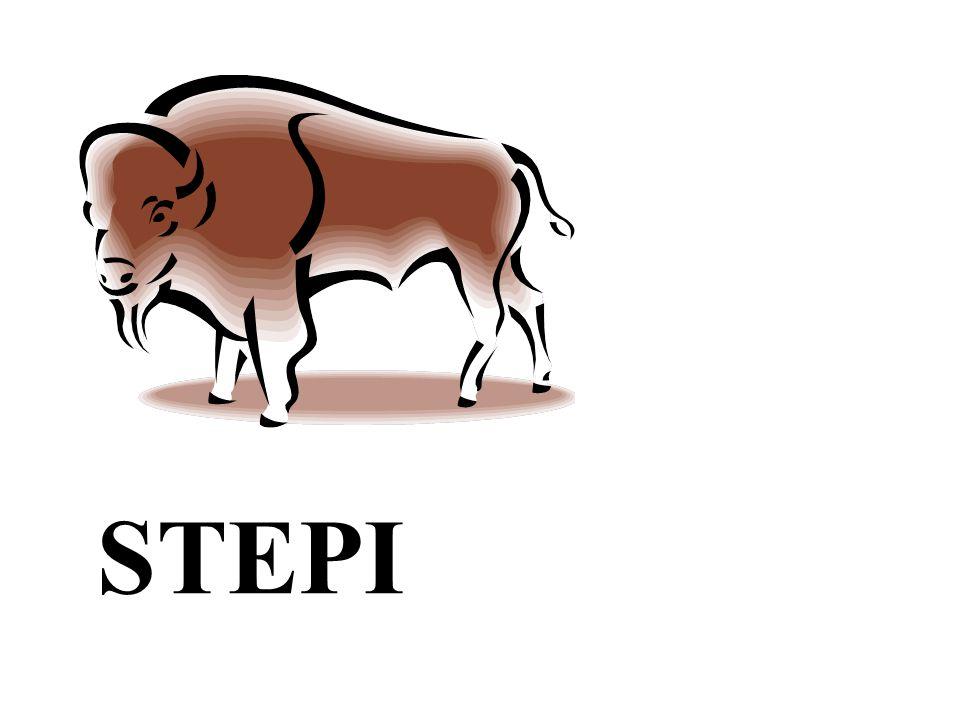 STEPI
