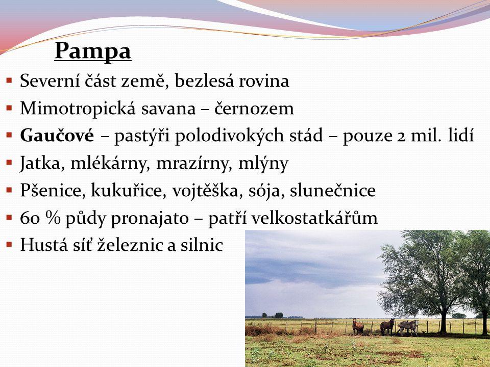 Pampa  Severní část země, bezlesá rovina  Mimotropická savana – černozem  Gaučové – pastýři polodivokých stád – pouze 2 mil. lidí  Jatka, mlékárny