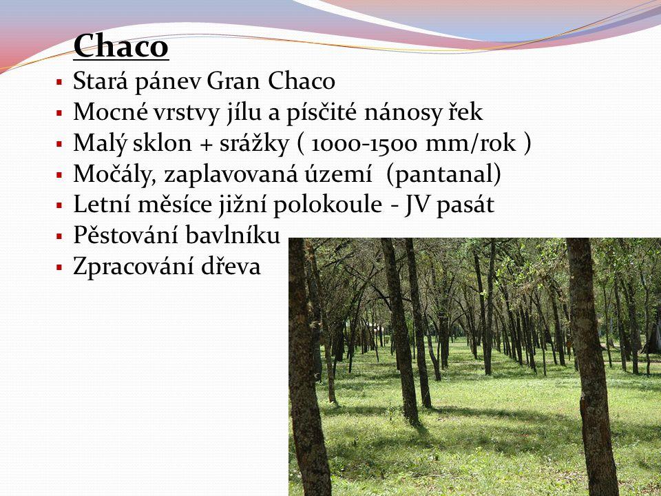 Chaco  Stará pánev Gran Chaco  Mocné vrstvy jílu a písčité nánosy řek  Malý sklon + srážky ( 1000-1500 mm/rok )  Močály, zaplavovaná území (pantan