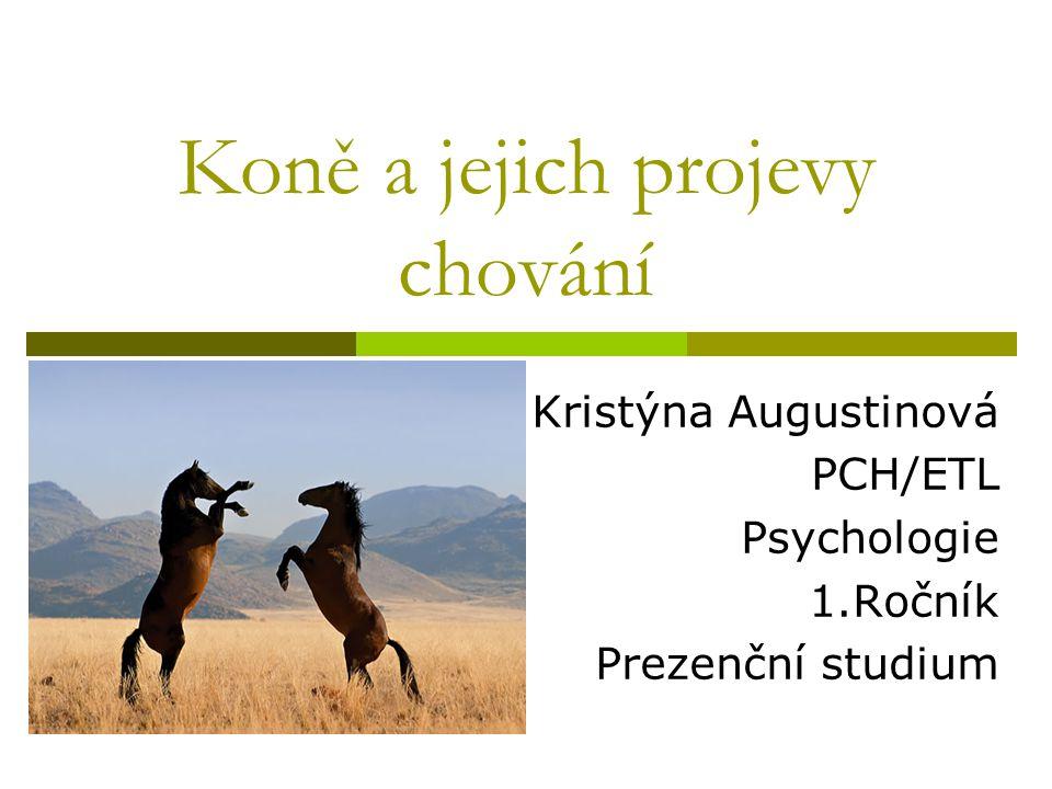Koně a jejich projevy chování Kristýna Augustinová PCH/ETL Psychologie 1.Ročník Prezenční studium