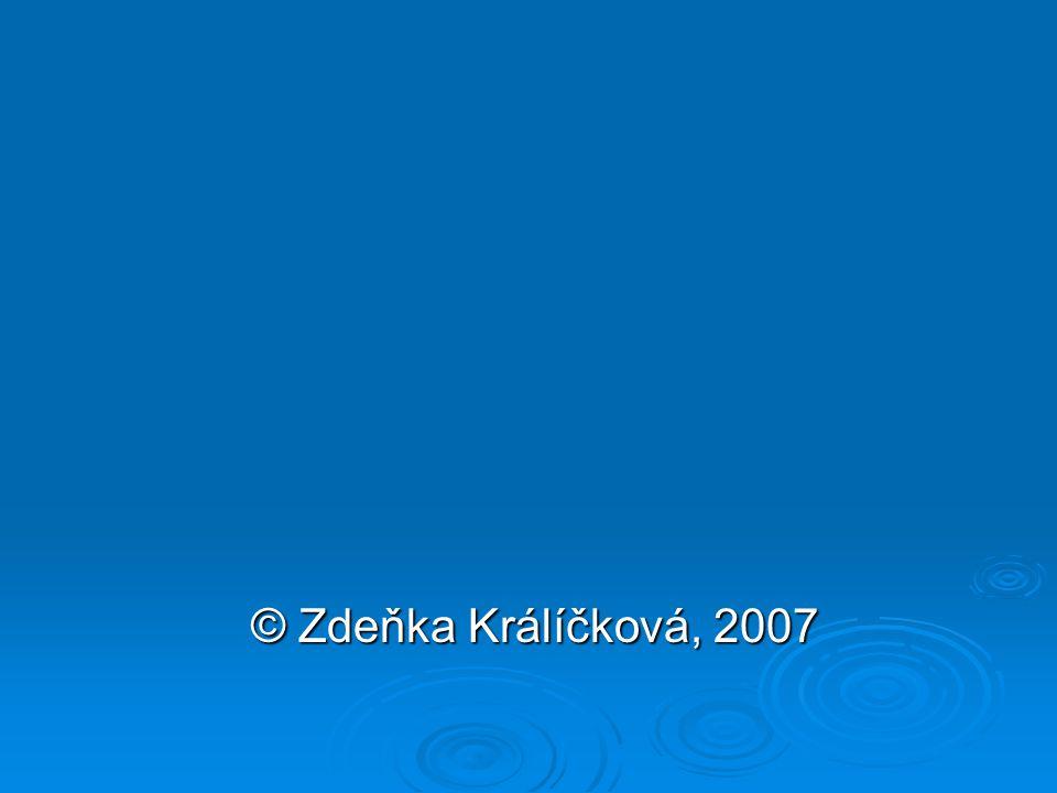 © Zdeňka Králíčková, 2007 © Zdeňka Králíčková, 2007