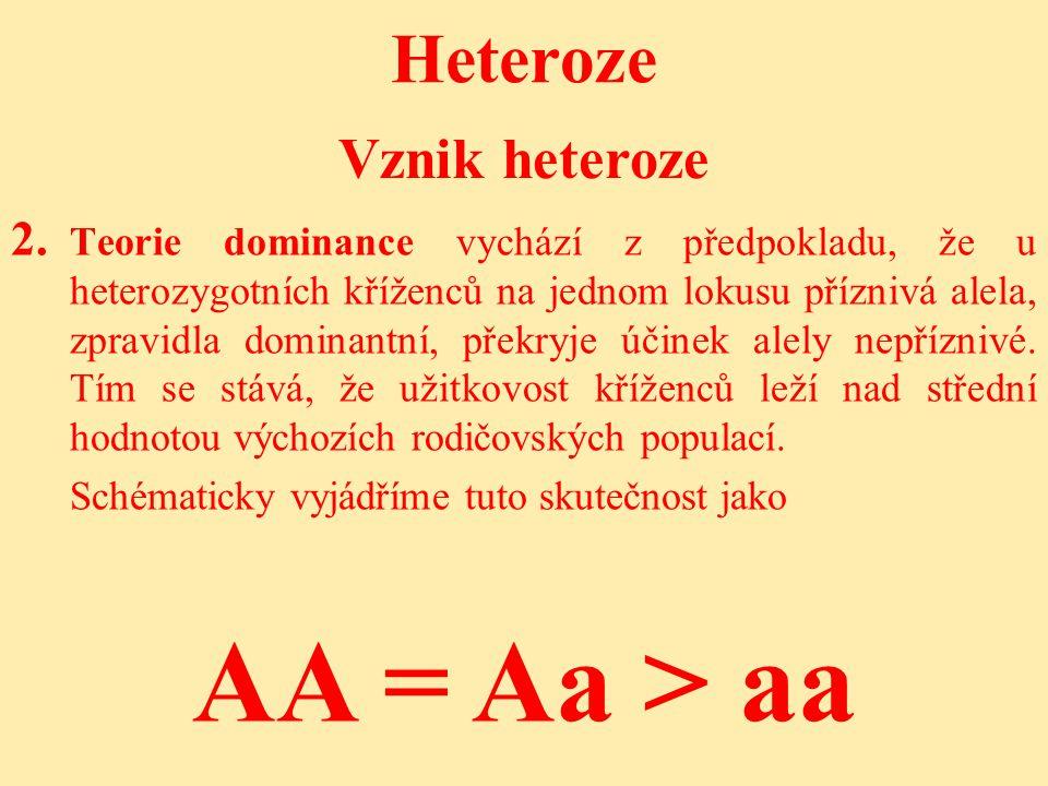 Heteroze 2.2.